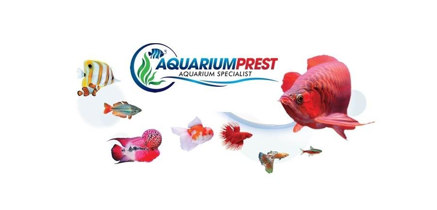 Aquarium Prest
