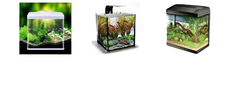 Acvarii Aquarium Prest